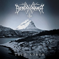 Borknagar True North Coverartwork