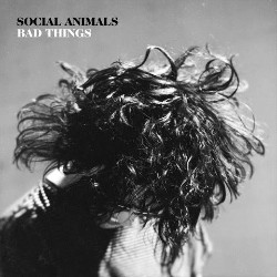 Social Animals Bad Things