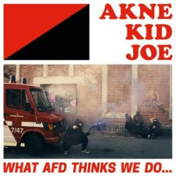 AKJ What AfD thinks we do