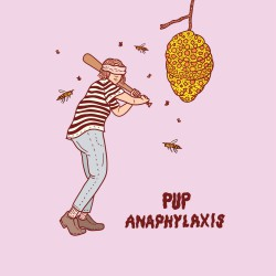 Pup Anaphylaxis